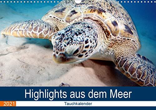 Highlights aus dem Meer - Tauchkalender (Wandkalender 2021 DIN A3 quer)