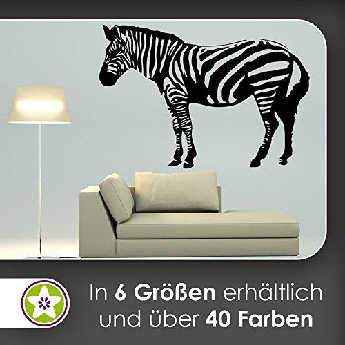 KIWISTAR Zebra gestreift Wildpferd Bergzebra Wandtattoo in 6 Größen - Wandaufkleber Wall Sticker
