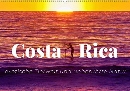 Costa Rica - exotische Tierwelt und unberührte Natur (Wandkalender 2021 DIN A2 quer)