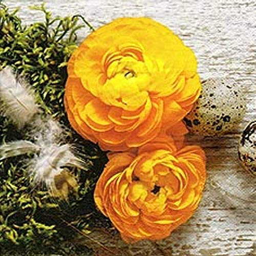 Linoows Serviettes 20 Pièce, Printemps, Renoncule Fleurs, Splendeur en Jaune 33x33 CM