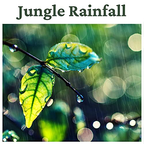 Relaxing Sounds of Rain Music Club