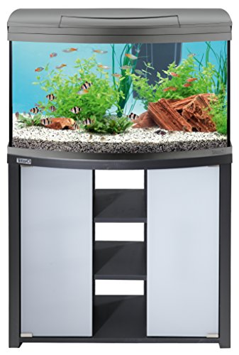Tetra AquaArt Evolution Line LED Aquarium-Komplett-Set 100 Liter anthrazit (moderne LED Beleuchtung, integrierte Tag-Nachtlichtschaltung, gebogene Frontscheibe) - 10