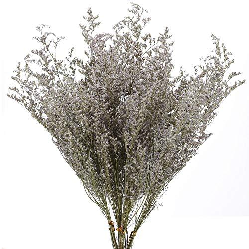 Flores Secas Decoracion Jarrones Eucalipto flores secas  Marca XHXSTORE