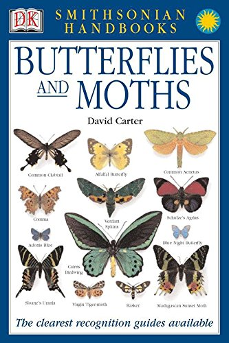 Handbooks: Butterflies & Moths: The Clearest Recognition Guide Available (DK Smithsonian Handbook)
