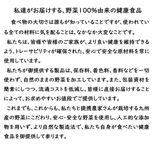 野菜の力 菊芋茶 ティーバッグ 20包 国産(九州産) (20包 x 3袋)