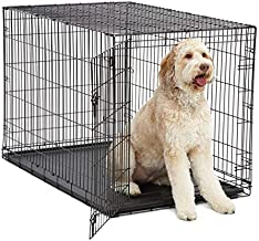XL Dog Crate | MidWest I Crate Folding Metal Dog Crate w/ Divider Panel, Floor Protecting Feet & Leak Proof Dog Tray | 48L x 30W x 33H Inches, XL Dog Breed, Black