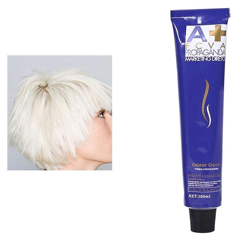 呼び出す超高層ビルモニター染毛剤 FidgetFidget 100ミリリットルヘアダイクリーム染料泥ヘアカラーワックスヘアスタイルスタイリングdiyの髪の着色 白 100mL