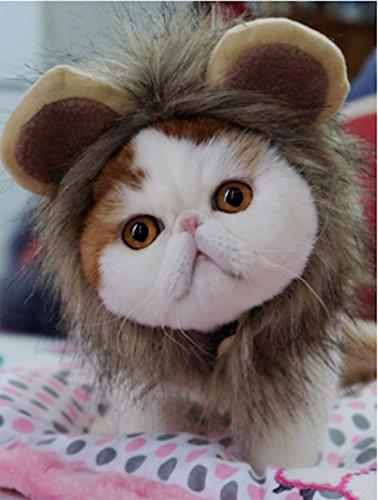 Realistisches Haustier Kostüm Löwe Mähne Perücke Hut für kleine Hundekatze und Welpen Kätzchen