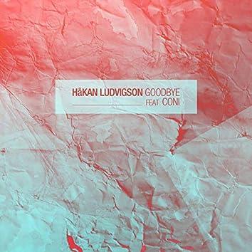 Goodbye Feat. Coni - EP