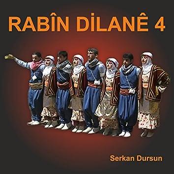 Rabîn Dilanê, Vol. 4