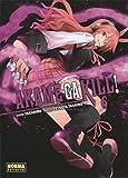 AKAME GA KILL! 06 (Spanish Edition)