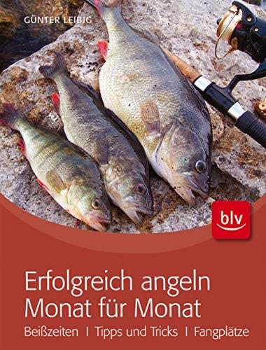 Erfolgreich angeln Monat für Monat: Beißzeiten · Tipps & Tricks · Fangplätze