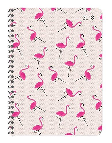 Ladytimer Ringbuch Flamingos 2018 - Taschenplaner / Taschenkalender A5 - Collegetimer / Schülerkalender - Weekly - Ringbindung - 128 Seiten