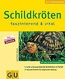 Schildkröten: faszinierend und vital