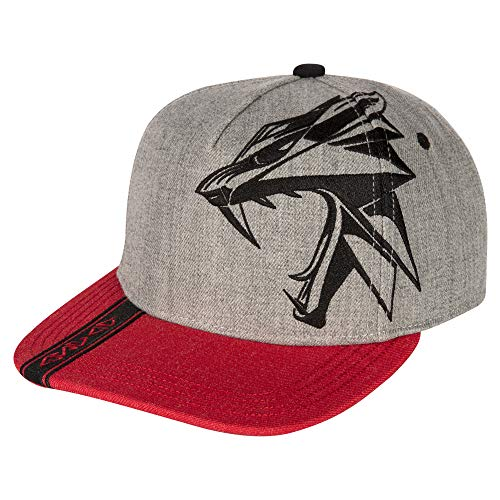 JINX The Witcher 3 Witcher Slays Snapback Baseball Hat, Gray, Adult Size