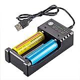 RUIHUA Dual-Slot USB Cargador con indicador de luz LED, 18650 Cargador de batería de Alta Potencia comisiones de Manera Independiente baterías de Litio de 3,7 V cilíndrica 2