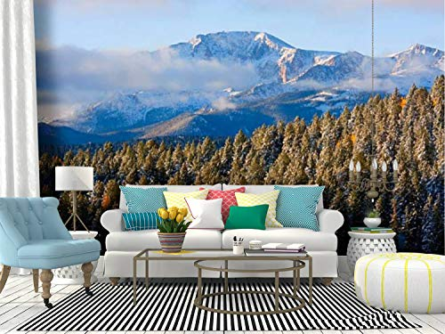 SKIWAMural Self Adhesive Wallpaper Roll Paper Pikes Peak Snow Golden aspenss and Pictures Removable Peel and Stick Wallpaper Decorative Wall Mural Posters Home Covering Interior Film