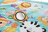 Zoom IMG-2 fisher price cbj65 tappetone cuccioli