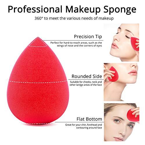 BEAKEY 5 Pcs Makeup Sponge Set Blender Beauty Foundation Blending Sponge, Flawless for Liquid, Cream, and Powder, Multi-colored Makeup Sponges