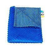 1buy3 MINKY Babydecke gefüttert |Plüschdecke |Krabbeldecke |Kuscheldecke 75 x 100 cm (57. Royalblau + kleine Punkte)