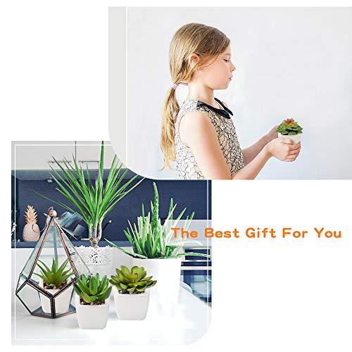 MCSQK WYD-artificial plants-0525