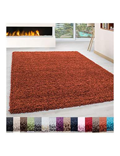 Carpet 1001 Pelo Largo Peluda Shaggy Sala de Estar Alfombra de Diferentes Tamaños y Colores - Terracota, 160x230 cm