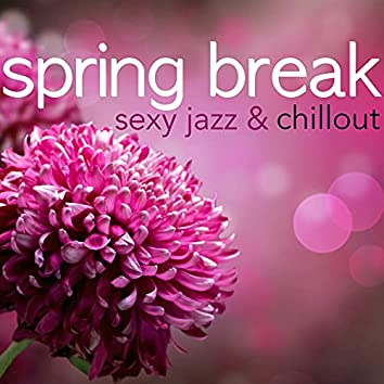 Spring Break Party Night Dj - Sexy Jazz & Chillout, Drinks and Cocktail Party All Night Long