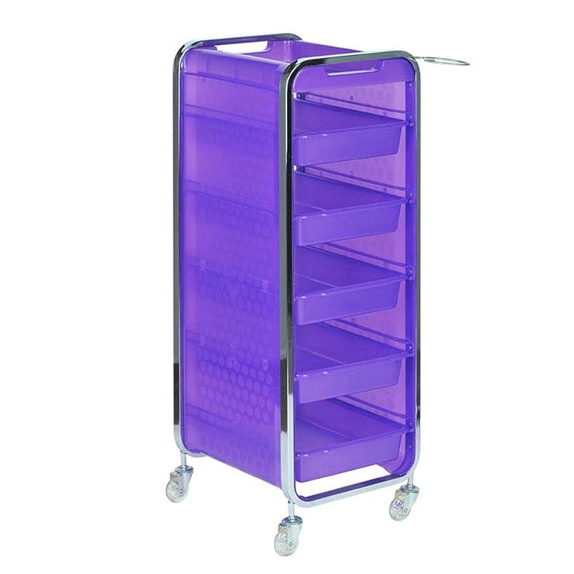 ヒープシードファウルサロン美容院トロリー美容美容収納カート6層トレイ多機能引き出し虹色,Purple,A