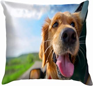 X-Large Golden Retriever Looking Out Car Window Animals Wildlife Dog Throw Pillow Case Cushion Cover Pillowcase Watercolor for Couch 18X18 Inch
