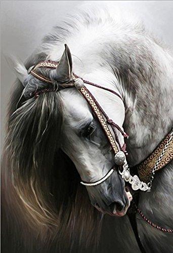 21secret 5D Diamond DIY Painting Full Round Drill Handmade Animal Portraits of Horse Head Cross Stitch Home Decor Embroidery Kit