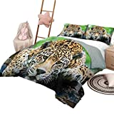 DayDayFun Juego de edredón Jungle Smooth Edredón Suave Jaguar sudamericano Animal Salvaje Carnívoro Felino en Peligro de extinción Imagen de Safari Tamaño Completo Naranja Negro Verde