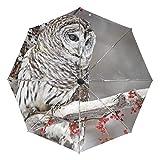 Wunderschöner Regenschirm mit Eule auf Ast, faltbar, automatisch, wind- und UV-beständig