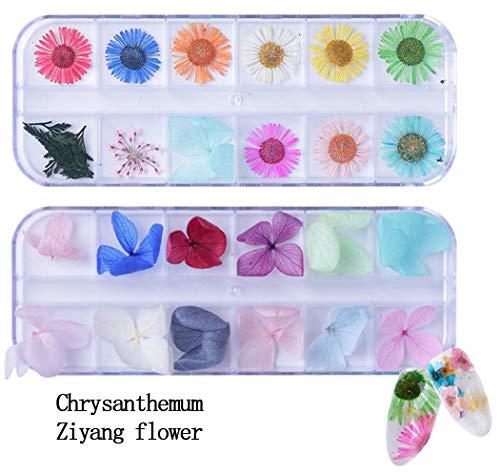 Ranvi Nagel Droge Bloem Manicure Sticker 3D Decoratie 2PCS (Chrysanthemum, ZiYang bloem)