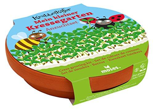 Moses 16097 Krabbelkäfer Mein Kleiner Kressegarten | Kresse Anzucht-Set mit Tonschale | Für Kinder