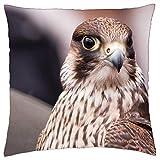 LESGAULEST Throw Pillow Cover (24x24 inch) - Predatory Birds Nature Falconry Falcon Manual