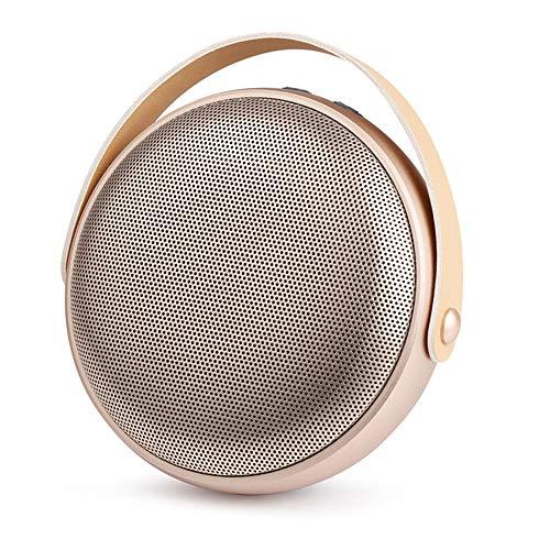 WERNG Bluetooth luidspreker draadloos metaal mini kleine kanon subwoofer mini draagbare USB Bluetooth 4.1 luidspreker grote capaciteit 1000 mAh wit-zilver