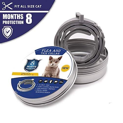 Collier anti-puces et anti-tiques pour chiens et chats, traitement anti-puces naturel et étanche pour chiens et chats, taille réglable, protection 8 mois, 1 paquet(Petit,Gris)