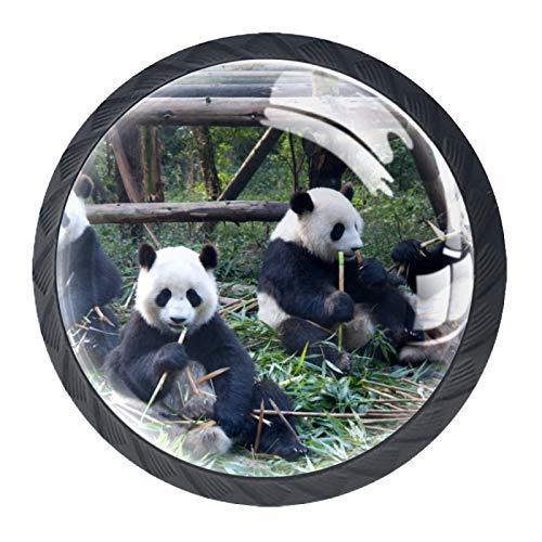 Panda - Pomo redondo de cristal para armario (35 mm, 4 unidades)