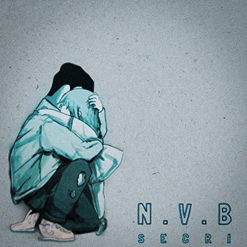 N.V.B