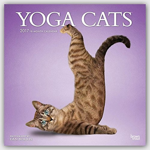 Yoga Cats - Joga-Katzen 2017 - 18-Monatskalender: Original BrownTrout-Kalender [Mehrsprachig] [Kalen