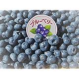長野県産 生産農家直送 無農薬栽培 【冷凍ブルーベリー 】約1kg入り/箱 主にジャム作りや、シャーベット等に最適!