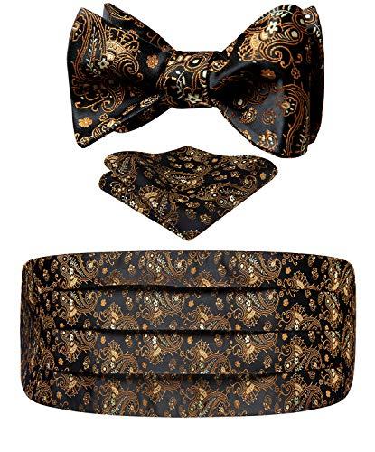 HISDERN Herren Floral Paisley Silk Kummerbund & Self Bowtie & Einstecktuch Set Black Gold