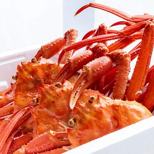 日本海産 紅ズワイガニ 約1.5kg 盛紋丸
