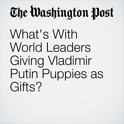 What's With World Leaders Giving Vladimir Putin Puppies as Gifts? copertina
