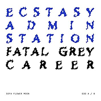 Ecstasy Admin Station / Fatal Grey Career (030)