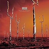 Muse: Origin of Symmetry (XX Anniversary Remixx) [Vinyl LP] (Vinyl)