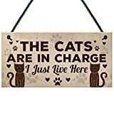 RED OCEAN Funny Cat Gifts For Cat Lovers Gift For Women Home Decor Plaque Animal Sign Pet Novelty Gifts