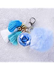 NW 1776 eternal rose key ring, made of real flowers, perfect clothing and handbag accessories, can be used as a gift for Valentine's Day Mother's Day Christmas anniversary