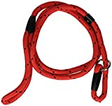 Rosewood Rope Twist Lead, 64-inch, Red/ Black