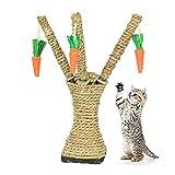 Katzen Kratzbaum Klein SAKURAM Katzenbaum mit Pfosten-Sisal-Kratze Kätzchen Spielturm mit...